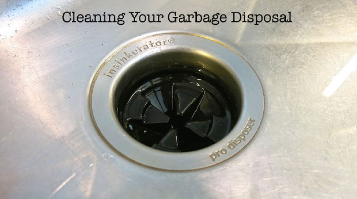How-To: Clean Your Garbage Disposal