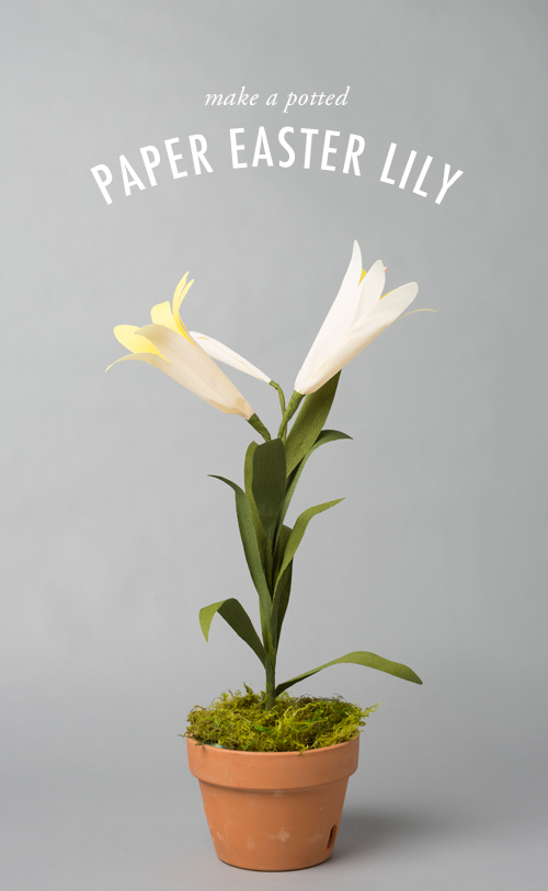 How-To: Pretty Paper Easter Lily