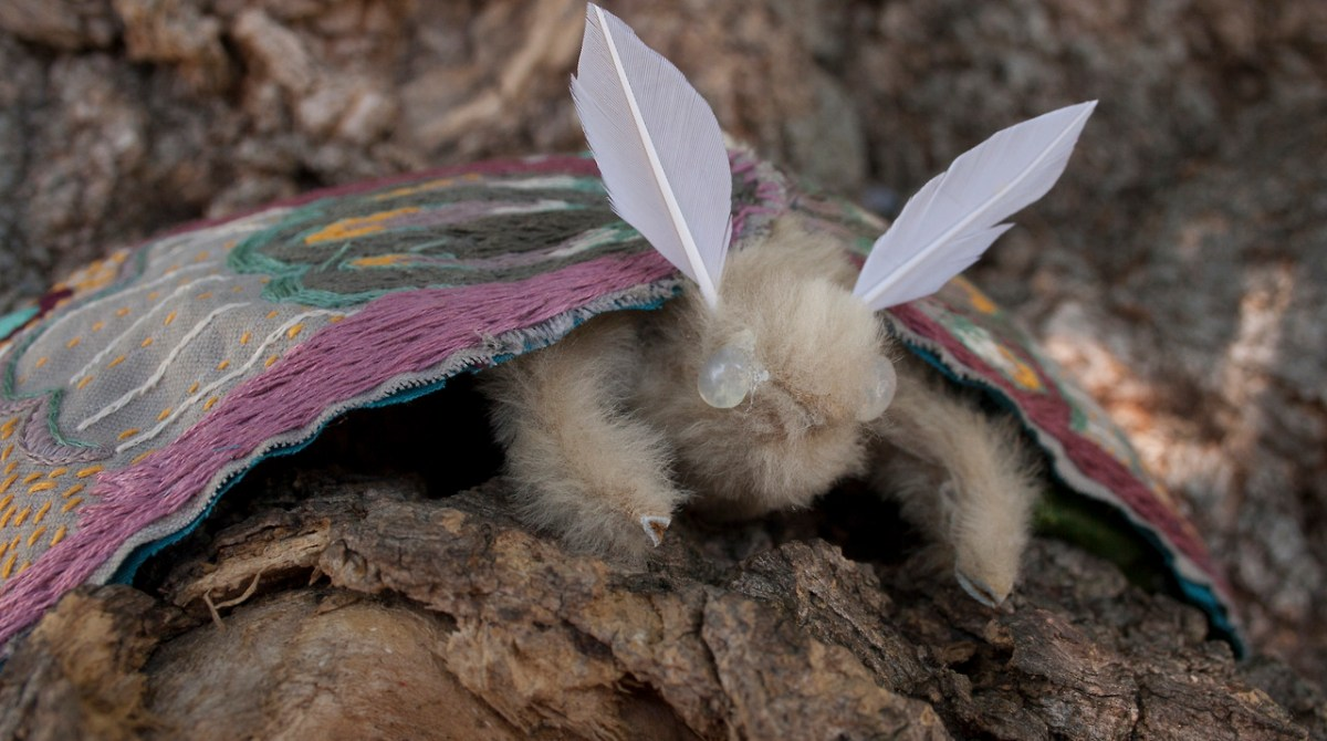 Giant Embroidered Moth