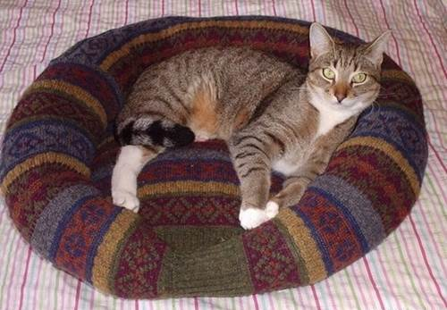 How-To: Turn a Sweater into a Pet Bed