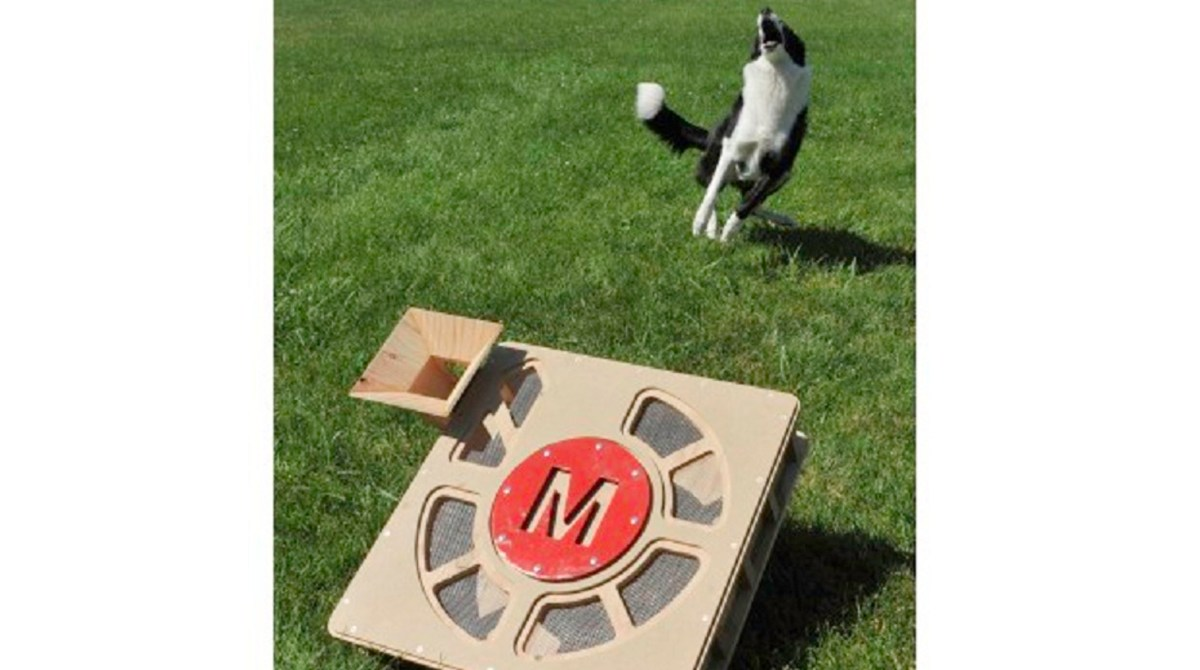 10 Perfect DIY Projects for Makers Who Love Their Pets