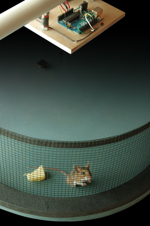 Smart Rat Trap Arduino + desperation = 21st-century rodent control
