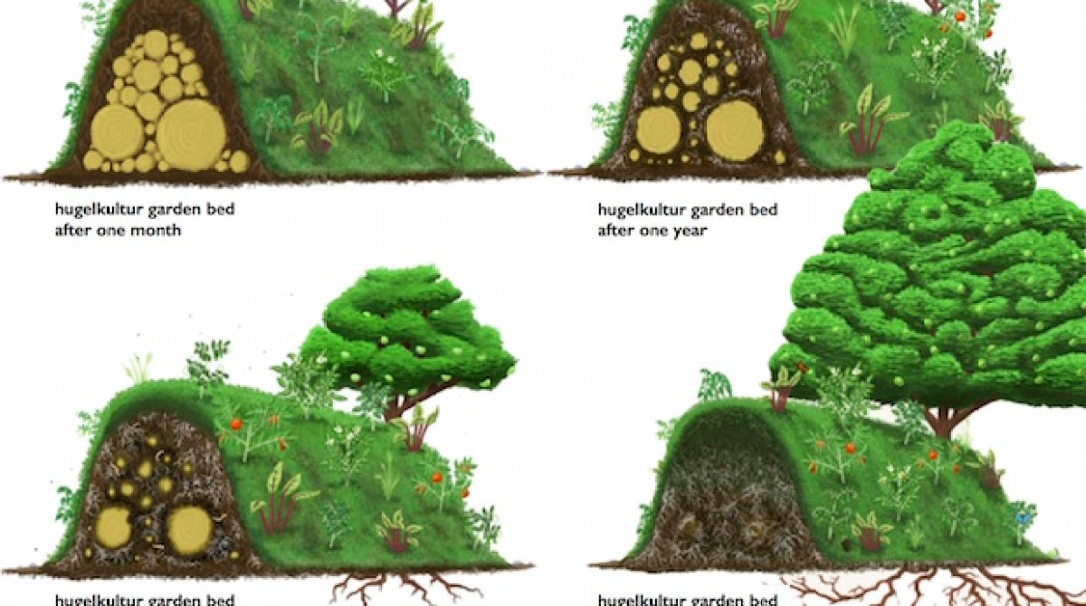 Build the Ultimate Backyard Garden with a Hugelkultur Raised Bed