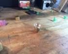 Build a Steampunk Sonic Screwdriver