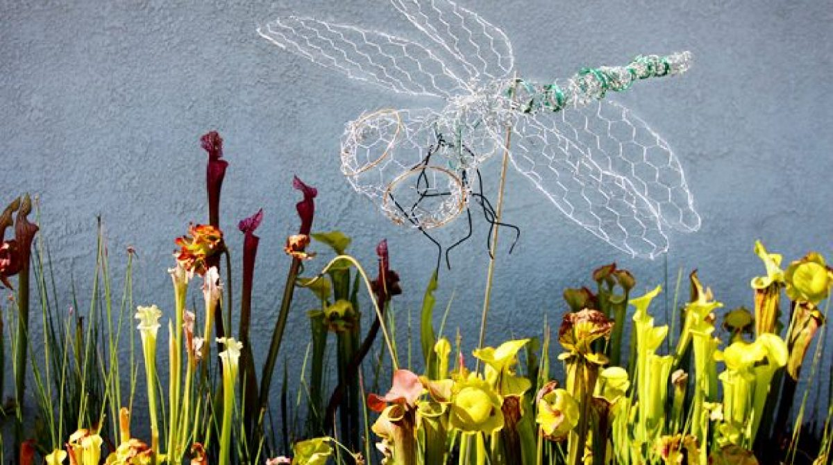 Make a Chicken Wire Dragonfly Decoration for Your Garden | Make: