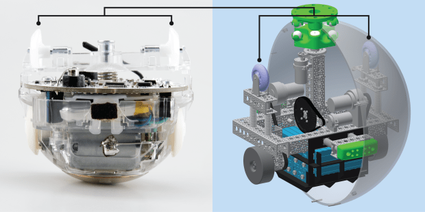 A side by side comparison of the Sphero 2.0 toy (left) and the scaled-up BB-8 sized model on the right.