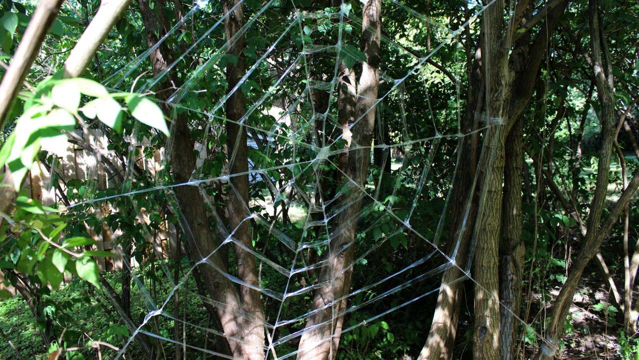 halloween is just around the corner and if youre going to be decorating your house youll definitely want a creepy crawly spider web to adorn your