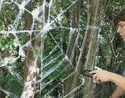 Weave a Giant Frightful Spider Web for Halloween