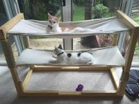 Build Bunk Bed Hammocks for Your Cats | Make: