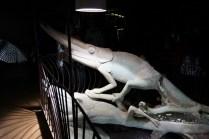 Giant chameleon sculpture