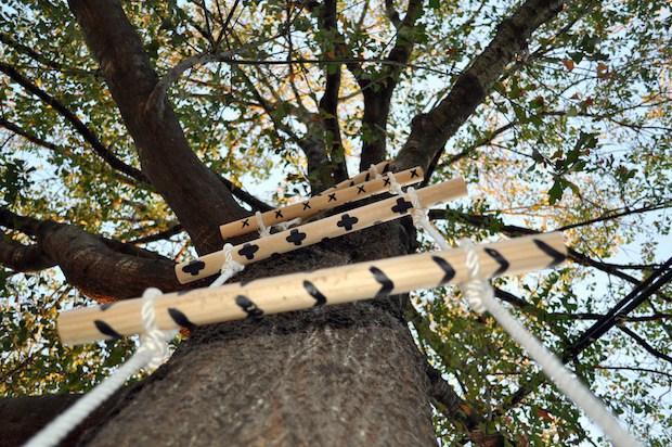 adriftinmymind_tree_ladder_01