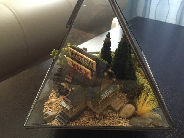 Side view of the terrarium