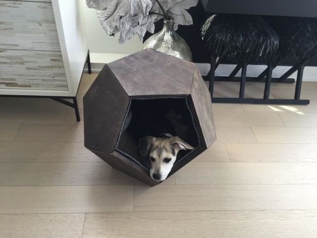 doghouse-dodecahedron