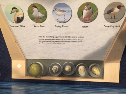 RFID bird call matching game for the nature center at Acadia National Park, Bar Harbor, Maine