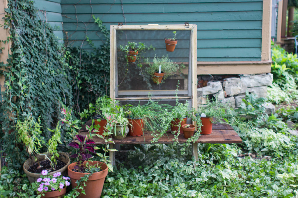Upcycle Window Screens for a Hanging Herb Garden