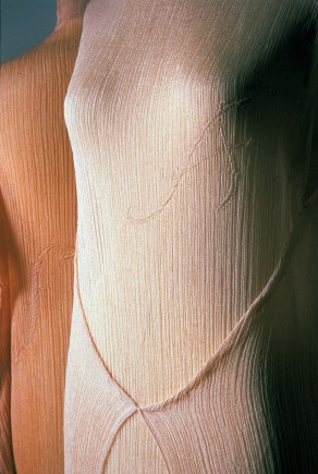 Scarlet Letter, from the Skin Dress Series by Yoshiko I Wada.