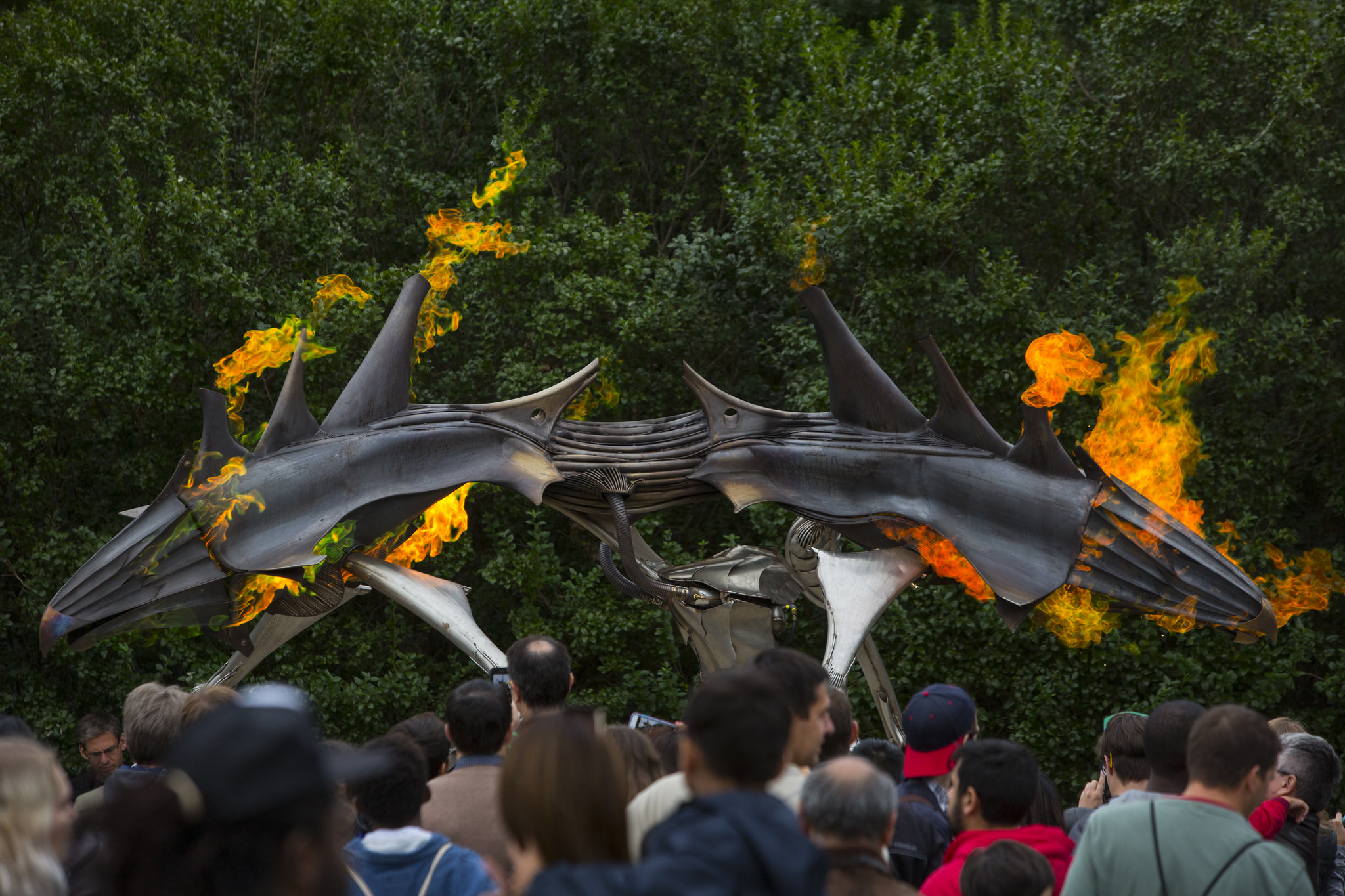 Fire-Breathing Gilly Emits Gorgeous Green Flames at Maker Faire New York