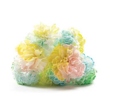 Dye news reviews and more make diy projects and ideas for How to dye flowers using food coloring