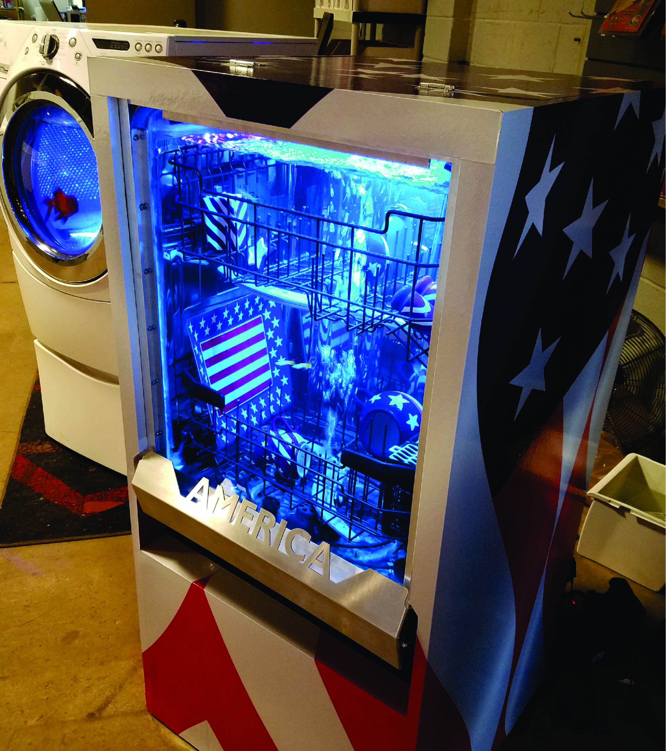 Convert a Dishwasher into a Fish Tank? Why Not?