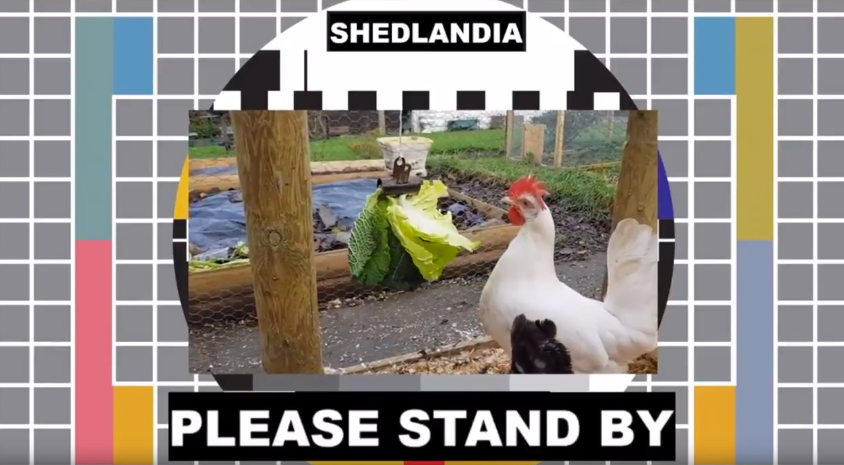 Weekend Watch: Welcome to Shedlandia