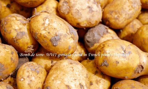 手りゅう弾がジャガイモとともに輸入された