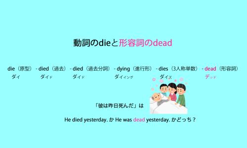 動詞の die - died - died - dying - dies と形容詞の deadの説明の画像