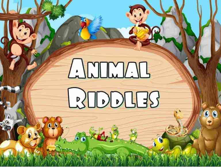 Animals Riddles /  Jeopardy  PowerPoint Classroom Game