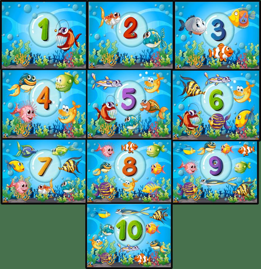 Kindergarten Numbers flashcards