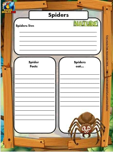 Free Animal Writing Worksheets for ESL Spider