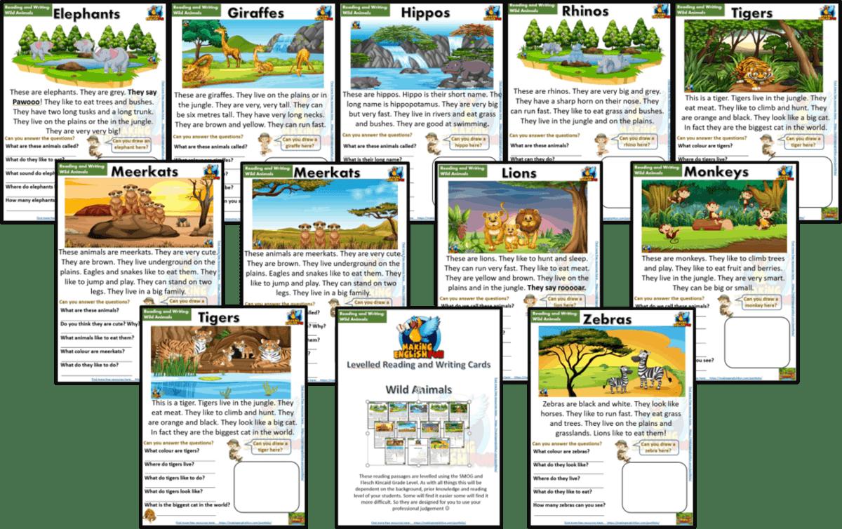 Wild Animals Animals Reading Comprehension Worksheets Kindergarten and Grade  1+ - Editable - Making English Fun [ 887 x 1412 Pixel ]