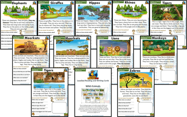 Reading and Writing Comprehension Cards – Wild Animals – Kindergarten and Young Learners