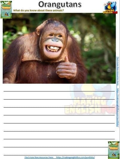 Animal Antics – 30 Writing Worksheets