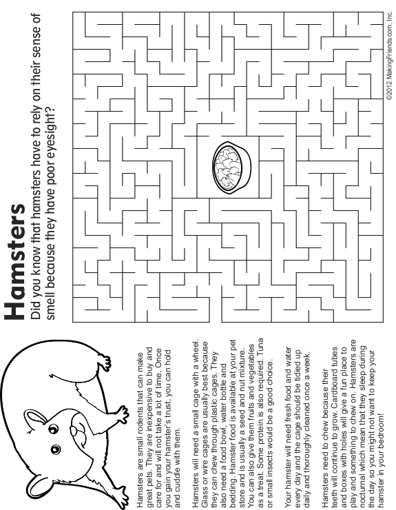 Pet Hamster Maze, Fact and Coloring Page