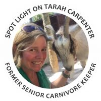 Tarah Carpenter, Zookeeper