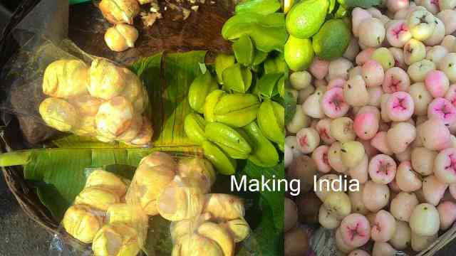 ma jivan shaifaly gujrat making india fruits