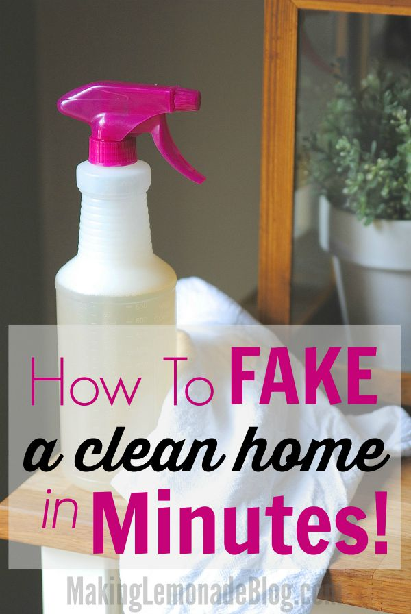 How to Fake a Clean Home in Minutes Flat Speed Cleaning 101  Making Lemonade