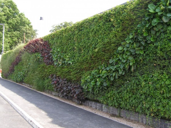 Green Living Walls Vertical Garden