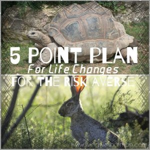 Are you looking to change your life but are not a risk taker. Here's a 5 Point Plan to make a life change without causing you stress.