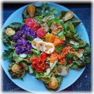 Bunter Salatteller mit Rohkost
