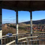 Ausblick auf die sanfthügelige Landschaft vom Austbergturm aus