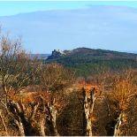 Blick auf Burg Regenstein von der Altenburg aus