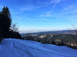 """Auf dem """"Schindelkopf"""", Stempelstelle 143 der Harzer Wandernadel, oberhalb von Osterode"""