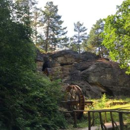 "Stempelstelle ""Regensteinmühle"" im Blankenburger Heers"