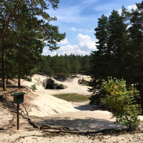 Sandhöhlen im Heers mit Stempelkasten der Harzer Wandernadel