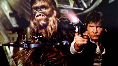 Photo of Concept Description: A Hole in the Ground! Han and Chewie's Big Adventure!