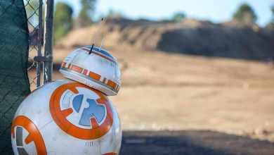 Construction on Star Wars land should be starting soon!