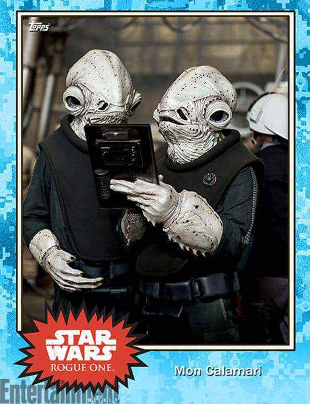 You've heard of rare blue lobsters right? While Admiral Ackbar is the traditional lobster red, hese Mon Calamari are a pale, pale blue color.