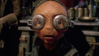 Photo of What role does Maz Kanata play in The Last Jedi?