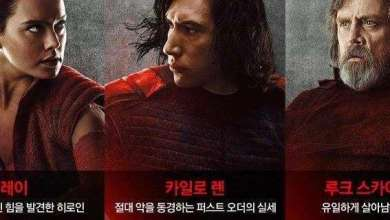 Photo of Star Wars: The Last Jedi South Korean character poster and description!