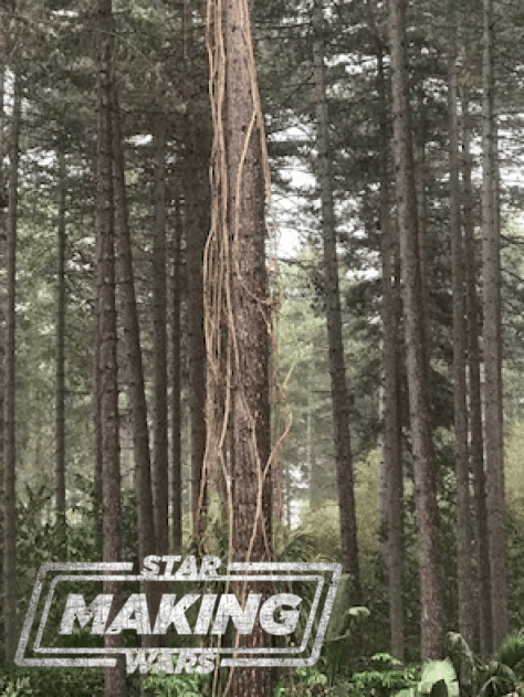 Star Wars: Episode IX's Black Park set has new vines and other happenings!